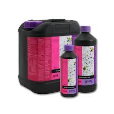 Atami B'Cuzz Coco Bloom Stimulator 1L